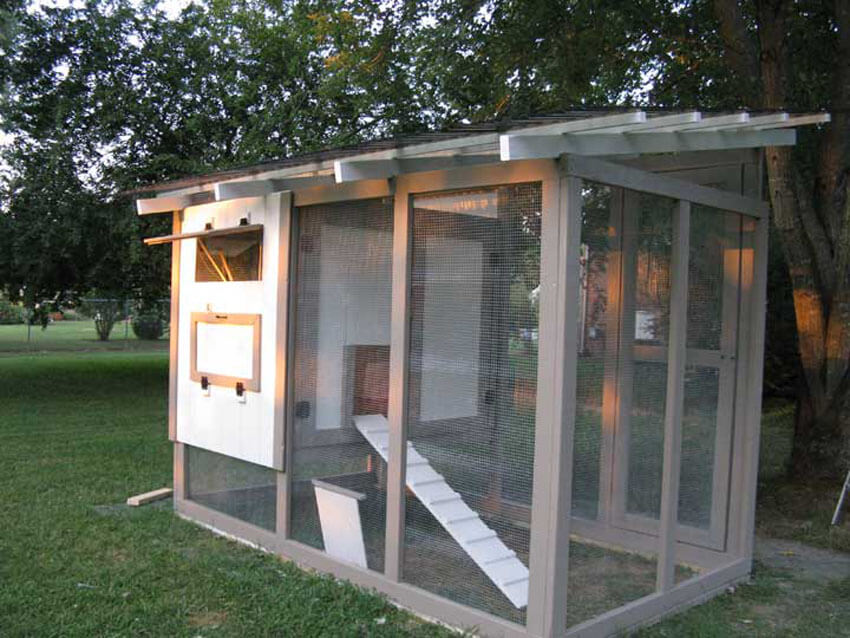 Give your chickens the home they've always wanted with these DIY chicken coop plans!