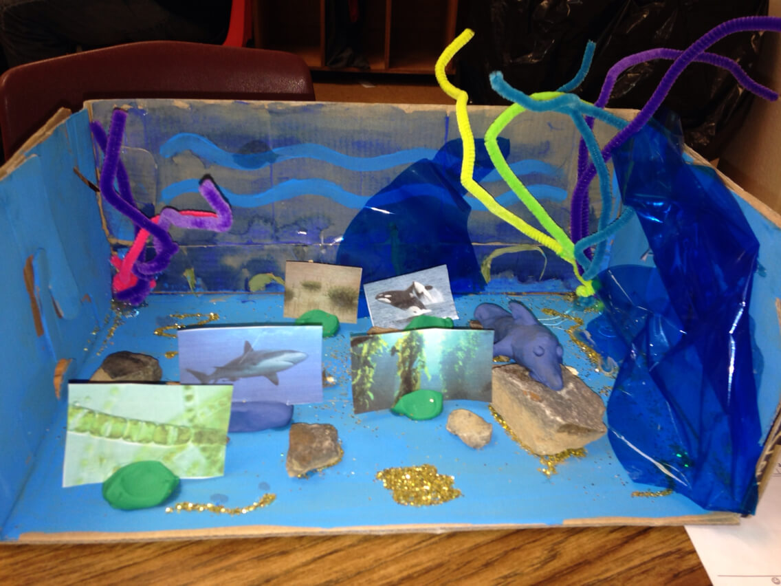 Oceanic scenic DIY crafts and projects for kids!