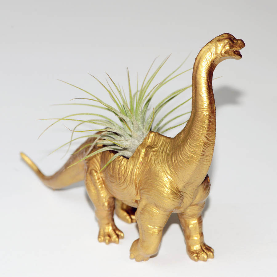 Easy DIYs to do at home: the dino planter