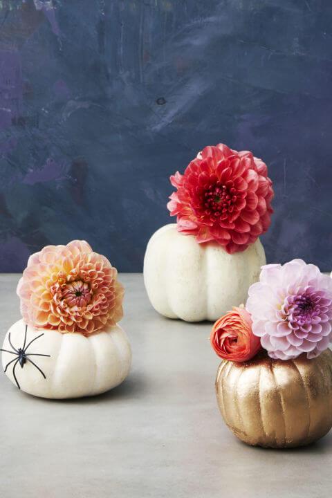Cute little pumpkin decor