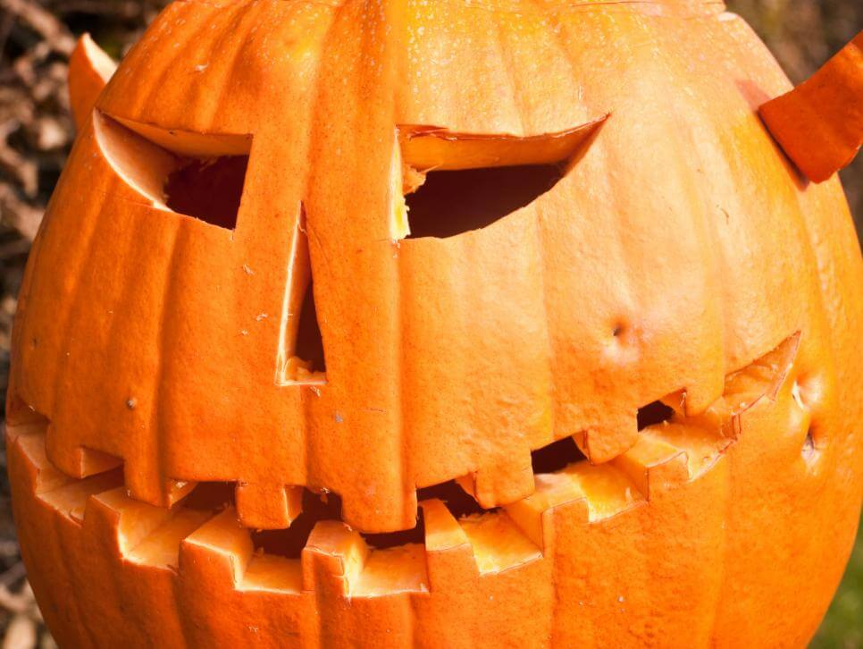 Some pumpkins are certainly more menacing than others.