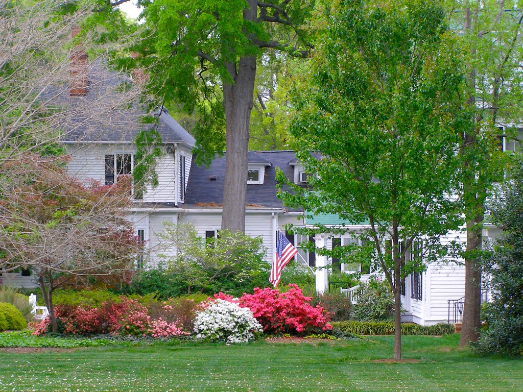 Surefire Spring Tree Care Solutions