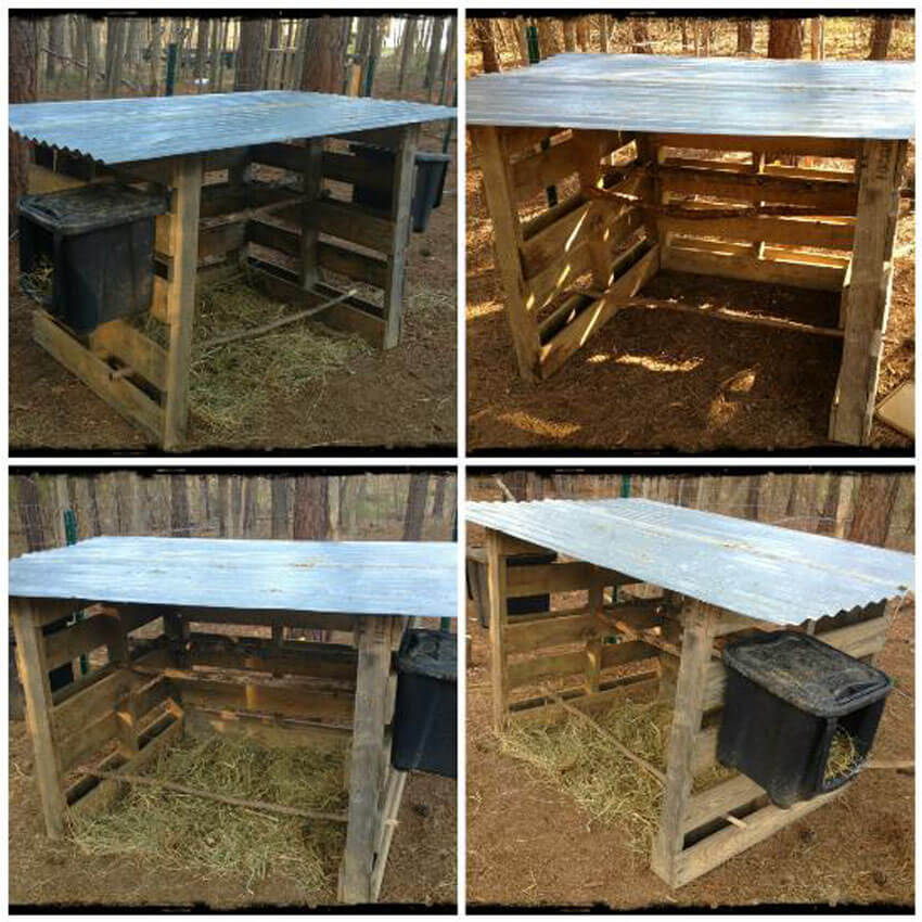 This super easy DIY chicken coop is made out of 3 pallets!