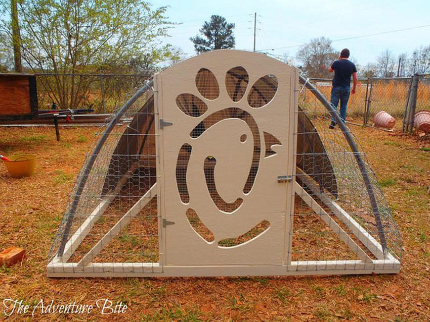 A portable chicken coop is great if you have a big backyard that needs some extra fertilizing.