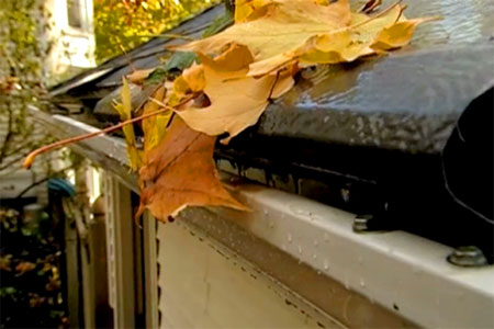 Easy Gutter Cleaning Tips to Save You Time and Money