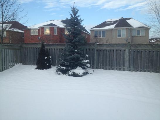 Backyard weatherization ideas to DIY
