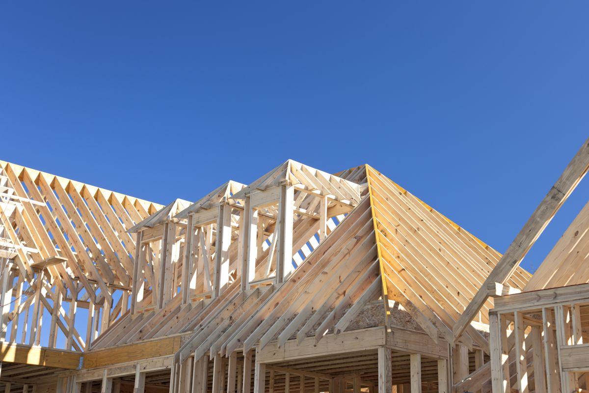 When Do I Need a Carpenter?
