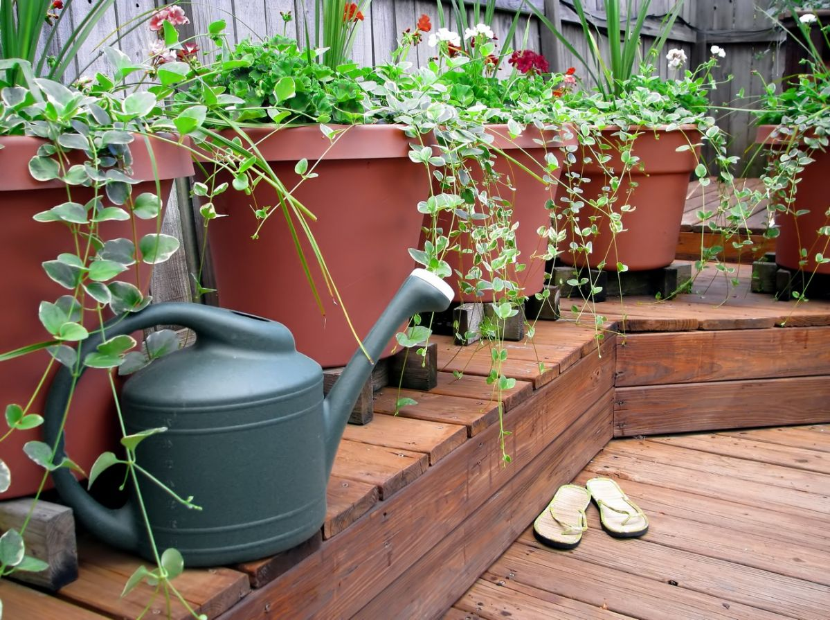 Decks require regular maintenance to keep them safe and looking great.