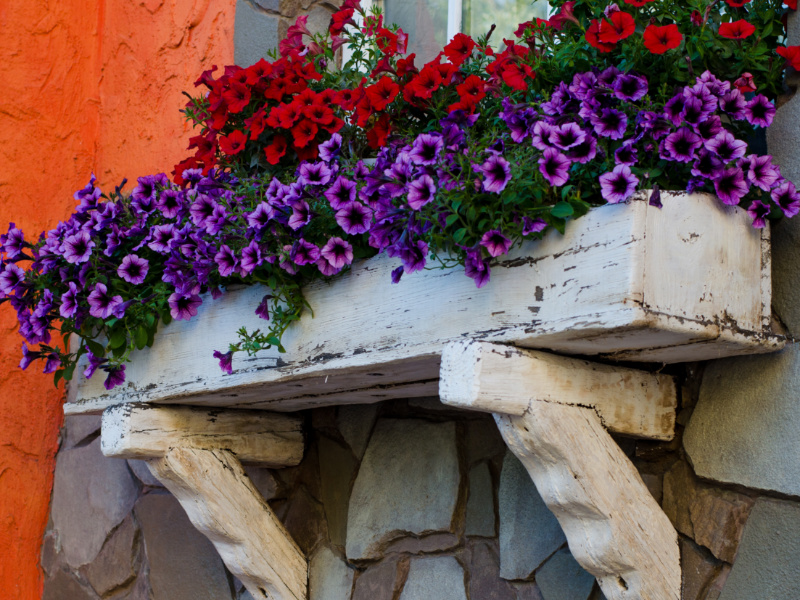 6 Gorgeous Early Spring Container Gardens