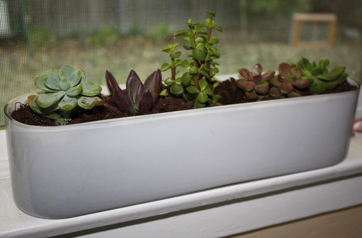 Exterior DIY doodads around your windows and sills
