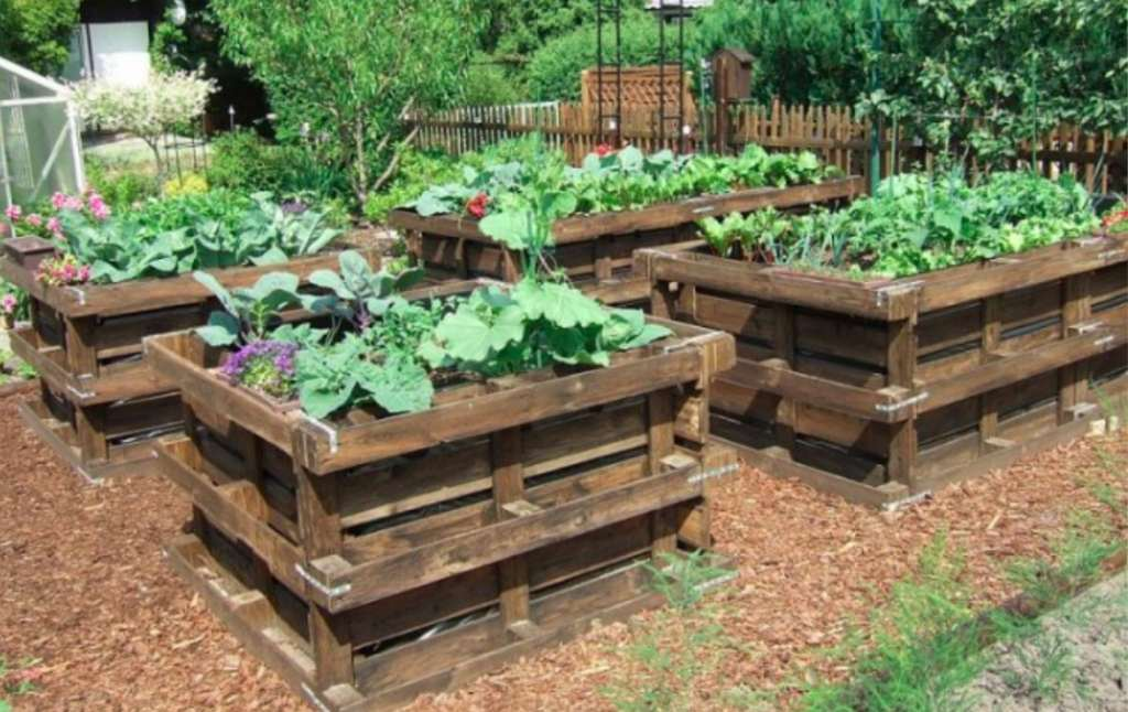 7 Unique Garden Ideas Using Pallets That Will Enhance Your Backyard