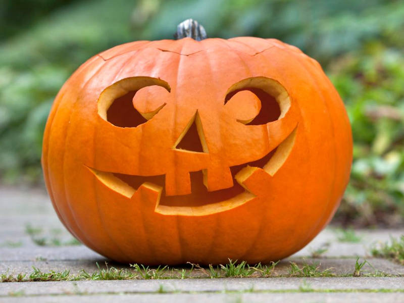 10 Creative Pumpkin Carving Ideas