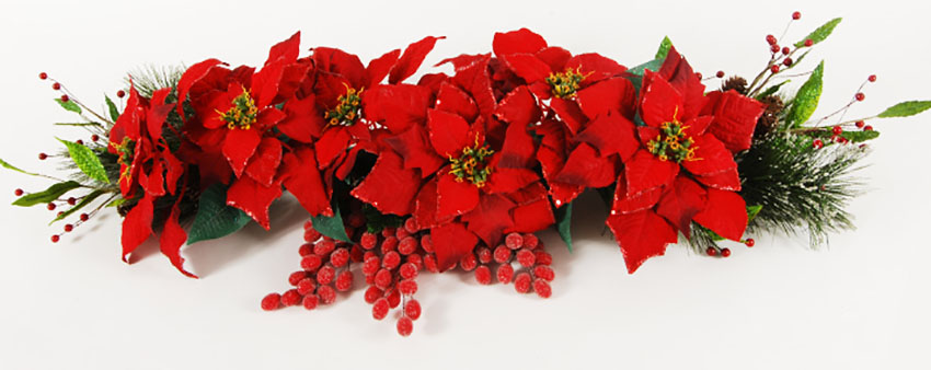 Poinsettias Decorating