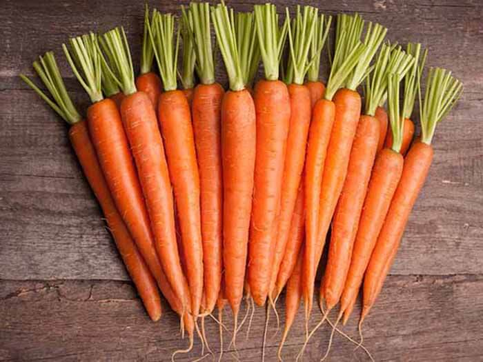 Have you tried planting carrot in a different season?